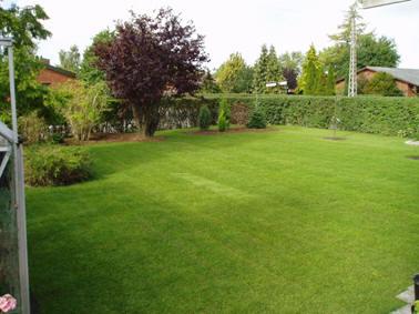 spredning af gødning på græsplænen
